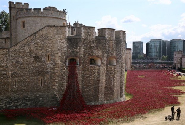 tower-of-london-poppies-3