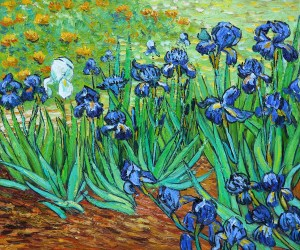 Irises by Vincent Van Gogh OSA409