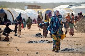 Somalis in Ethiopia