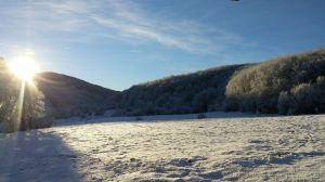 Linden snow